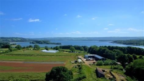 View of the community farmland
